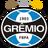 Гремио Порту-Алегри (23)