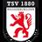 ТСВ 1880 Вассербург